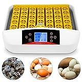 Incubatore automatico 41 uova con giraruovo automatico e regolatore intelligente di temperatura e umidità per cova polli, anatre, uccelli d'oca