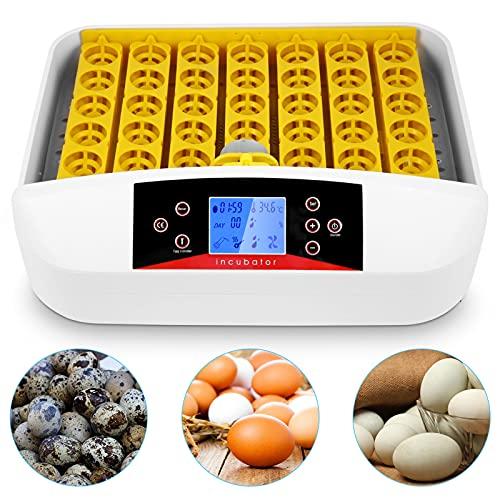 Incubateur automatique 41 œufs avec tourneur automatique et contrôle intelligent de température et d'humidité pour éclore poules, canards, oies