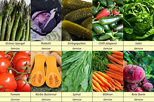 10 Gemüse Samen Set 1 Gurke, Roter Kohl, Spargel, Kürbis, Möhren, Salat, Spinat, Tomaten, Rote Beete, Chili, Tomaten, Einlegegurken