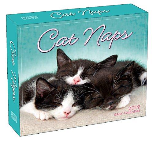 Cat Naps B 2019 (Box)