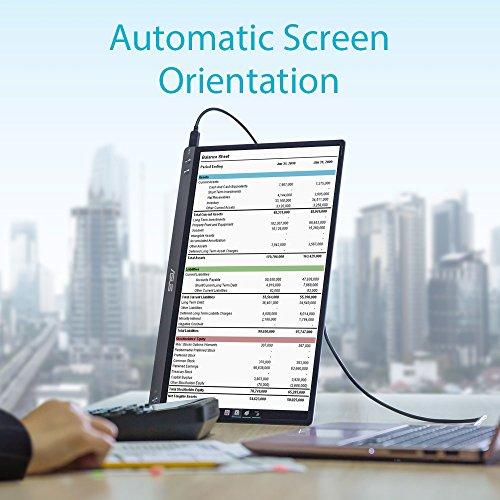 Asus ZenScreen MB16AC 39,6 cm (15,6 Zoll) tragbarer USB Monitor (Full HD, USB Typ-C, IPS-Panel, Blaulichtfilter) dunkel-grau