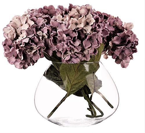SOLAVIA Ovaal glas Ovaal Bloem Orchidee Vaas Terrarium 17 x 12cm Tank Vaas Planter, Huisopwarming Gift