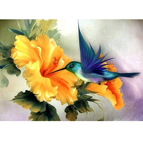 ACANDYL Paint by Number Hummingbird DIY Oil Painting Paint by Number Kit for Kids Adults Students Beginner Canvas Painting by Numbers Acrylic Oil Painting Arts Craft Decoration Hummingbird 16x20 in