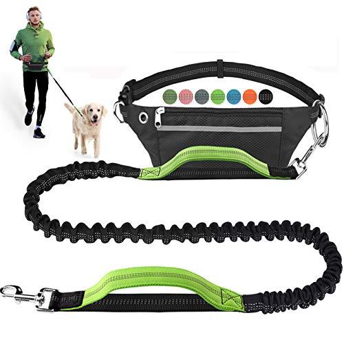 Hands Free Dog Leash for Running Walking Jogging Training...