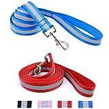 Da Boon Ultra Reflective Double-Sided Dog Leash (Blue)