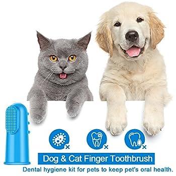 CAM-ULATA Lot de 12 brosses à dents pour chien et chat - En silicone souple - Colorées - Pour l'hygiène dentaire - Pour chiot, petit chien
