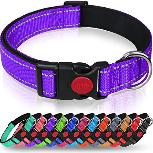 Taglory Reflective Dog Collar with Safety Locking Buckle, Adjustable Nylon Pet Collars for Medium Dogs, Purple