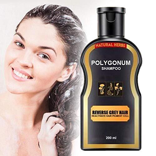 champú y acondicionador naturales,Champú para oscurecer el cabello gris para hombres y mujeres, champú natural para viajes