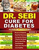 DR SEBI: How to Naturally Unclog the Pancreas, Cleanse the Kidneys and Beat Diabetes & Dialysis with Dr. Sebi Alkaline Diet Methodology (Dr. Sebi Treatment and Cures)