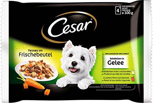 Cesar Hundefutter Nassfutter Feines im Frischebeutel Selektion in Gelee in Gelee, 52 Packungen (13 x 4 x 100g)