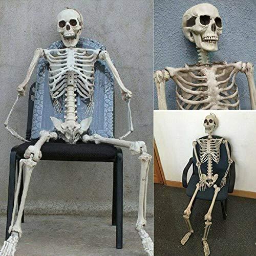 zhuodike Poseable Volle Leben Größe Menschliches Skelett Prop Halloween Party Decor