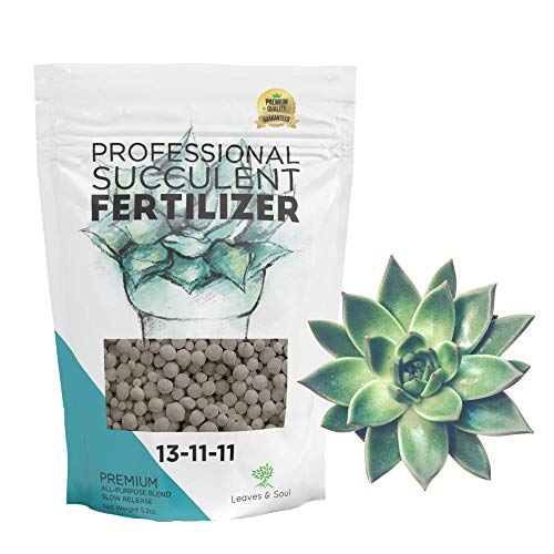 Leaves and Soul Succulent Fertilizer Pellets |13-11-11 Slow Release Pellets for All Cactus and Succulents | Multi-Purpose Blend & Gardening Supplies, No Fillers | 5.2 oz Resealable Packaging