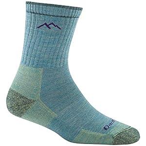 Darn Tough Heady Stripe Micro Crew Light Cushion Sock – Men's