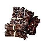 Madagascar Bourbon Vanilla Bean 10 baccelli 16 cm minimo fresco extra non spaccato peso 35g circa qualità gourmet consegnato sottovuoto confezionato in pratico imballaggio anti rifiuti!