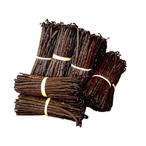 Bourbon Vanille aus Madagaskar, 10 ganze Vanilleschoten in hoher Qualität und größer als 16 cm, Gewicht circa 30 gr, Gourmetqualität, in praktischer Vakuumverpackung für längere Haltbarkeit