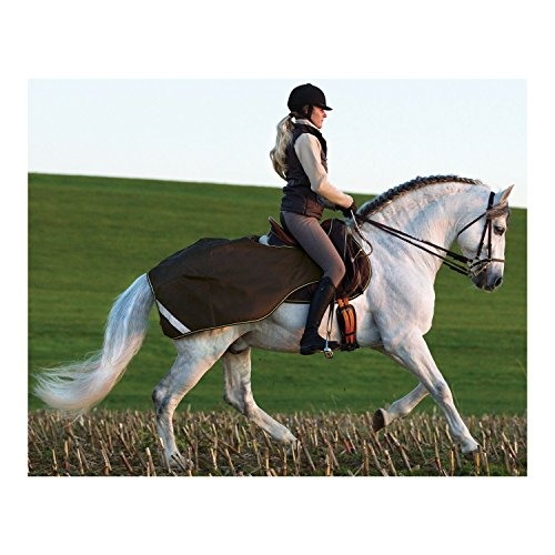 Horseware Amigo Couverture d'entraînement pour chevaux Bleu bleu marine 140 cm