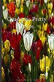 Cuaderno Pretty Tulips: Lleve un registro de todas sus actividades con este cuaderno fácil de seguir.