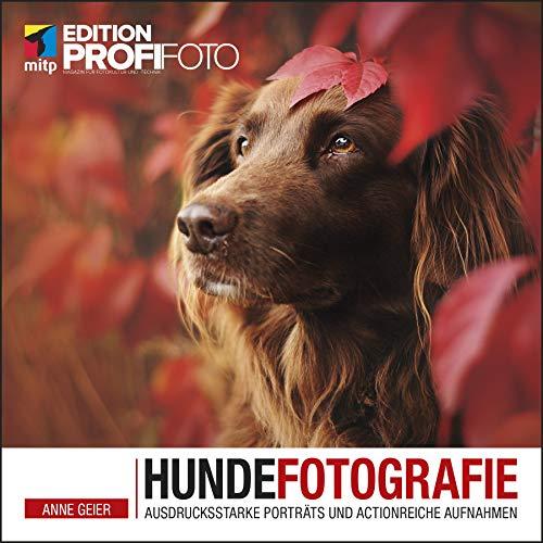 Hundefotografie: Ausdrucksstarke Porträts und actionreiche Aufnahmen (Edition ProfiFoto) (mitp Edition ProfiFoto)