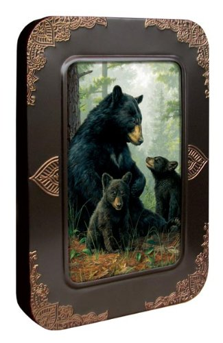 Tree-Free Greetings Noteables Notecards In Reusable Embossed Tin, 12 Card Assortment, Recycled, 4 x 6 Inches, Bear Family, Multi Color (76051)