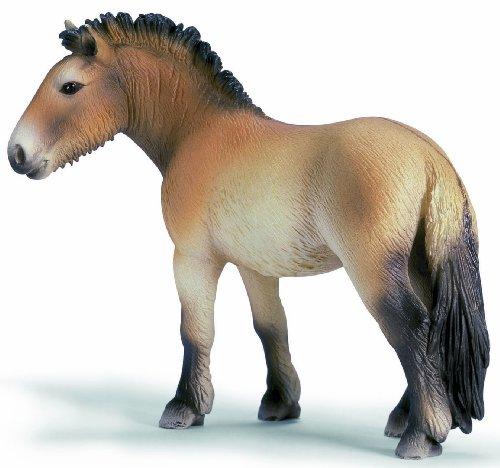 Schleich 13620 Przewalskipferd