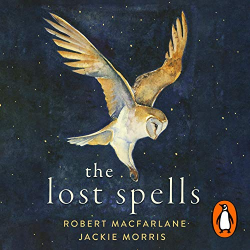 The Lost Spells  By  cover art