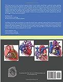Zoom IMG-1 atlas of congenital heart disease