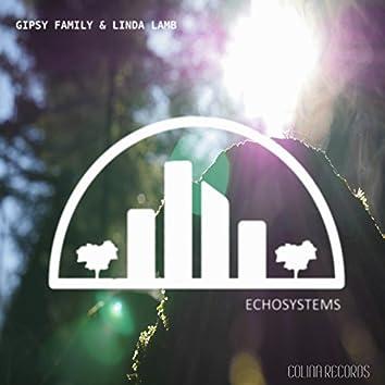 EchoSystems