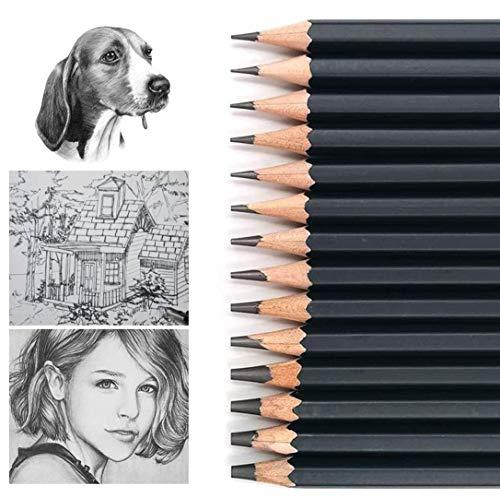 Skizze Bleistift Set, Graphit-Bleistifte 14st Zeichenstifte Skizze Bleistifte professionelle Malstifte Zeichenwerkzeug 6H-12B Kohlestifte für Skizzen Zeichnen Grafitti Zeichnung