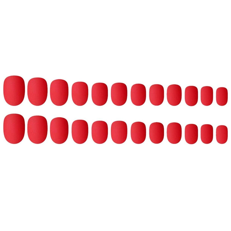 論理的にテレビ致命的Decdeal ネイルチップ 24ピース 偽ネイルのヒント 12種類のサイズ ネイルサロン diy ネイルアートツール