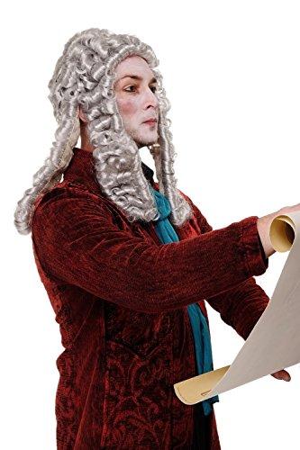 WIG ME UP ® - WIG002-K309 Perücke Faschingsperücke Karneval Adliger Barock Renaissance Richter Lord Komponist Grau