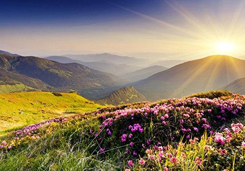 wandmotiv24 Fototapete Berge Berglandschaft Hügel, M 250 x 175 cm - 5 Teile, Fototapeten, Wandbild, Motivtapeten, Vlies-Tapeten, Gras, Wiese, Natur M0511