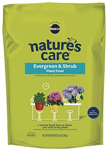 Miracle-Gro 100134 Nature's Care Evergreen & Shrub Plant Food, 3 LB