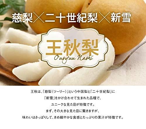 梨王秋梨おうしゅうなし風のいたずら訳あり大きさおまかせ5kg鳥取県産JAとっとり梨ナシなし