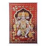 Bild Hanuman 3D Hologramm 33 x 48 cm rot Gottheit
