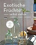 Exotische Früchte selbst ziehen (Mein Garten): vermehren - pflegen - genießen