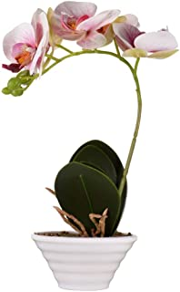 ENCOFT phalaenopsis Silk Artificial Flower White/Puple/Pink/Yellow Butterfly Orchid Bonsai with Ceramic vase Home Garden Party Wedding Decoration (Light Pink)