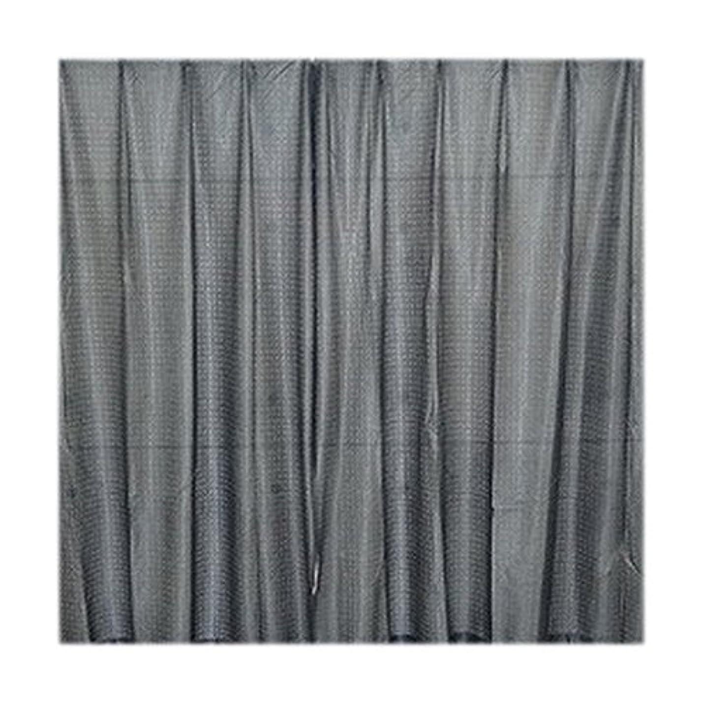 闇スペースくしゃみフルネス サクセス レースカーテン シーマ ブラック 100×198 2P