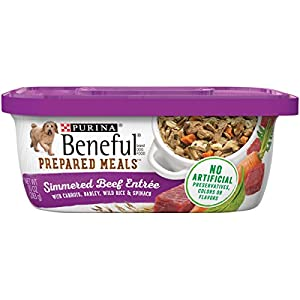 Purina Beneful Gravy Wet Dog Food, Prepared Meals Simmered Beef Entree – (8) 10 oz. Tubs