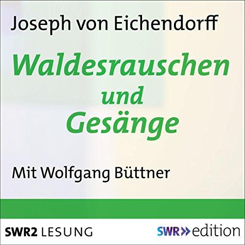 Waldesrauschen und Gesänge audiobook cover art
