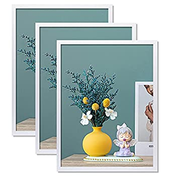 THREELOVE 18x24 Frame White Large Picture Frame Solid Wood 18x24 Poster Frame Wall Mounting Set of 3