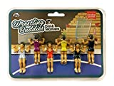 NPW-USA Drinking Buddies Cocktail/Wine Glass Markers, 6, Wrestling
