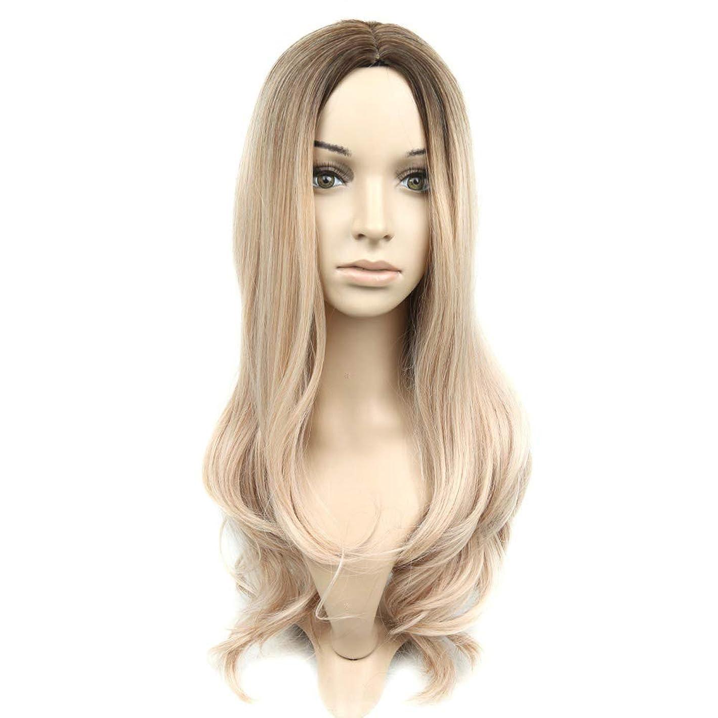 実質的下品ストレスslQinjiansav女性ウィッグ修理ツールファッション女性ロングカーリー合成フルヘアウィッグヘアピースパーティーコスプレ小道具