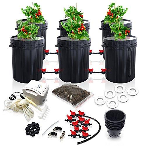 SavvyGrow DWC Hydroponics Growing System-Kit - Large 5 Gallon 6...