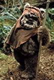 Wicket the Ewok: Writing Journal • Notebook • Diary • Notepad...