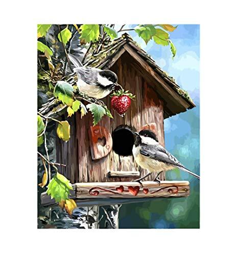 Gbrand Pintura por Números para Adultos y Niños, Casa del pájaro Pintar con Números por Números Decoración del Hogar, Sin Marco, 40 x 50 cm Sin Marco