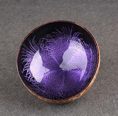 Emousport Coconut Shell Key, Candy Bowl Table Key Storage Section Coconut Bowl Ink Creative Ornament Creative Storage Bowl (Purple)