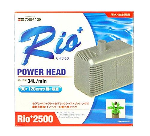 カミハタ Rio+2500 (50Hz)