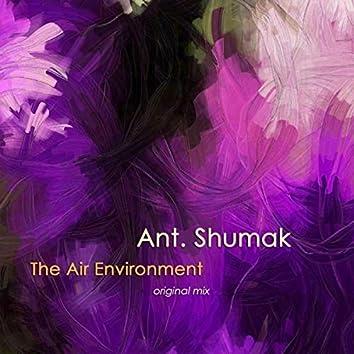 The Air Environment