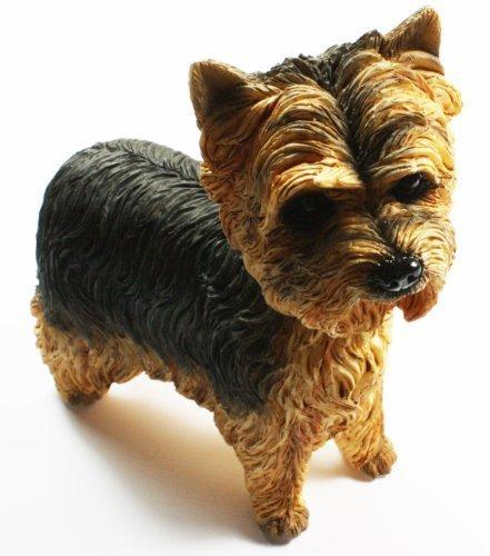 perro Studies - Walkies GAMA Yorkshire Terrier Estatuilla de, de Leonardo, Diseñado en Inglaterra, EN CAJA DE REGALO, tamaño 12cm largo x 9cm de alto