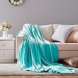 Hboemde Soft Summer Blanket Twin Size Fleece Warm Fuzzy Throw Blankets Lightweight Microfiber for Couch Bed Sofa All Season(Light Blue,60x80)